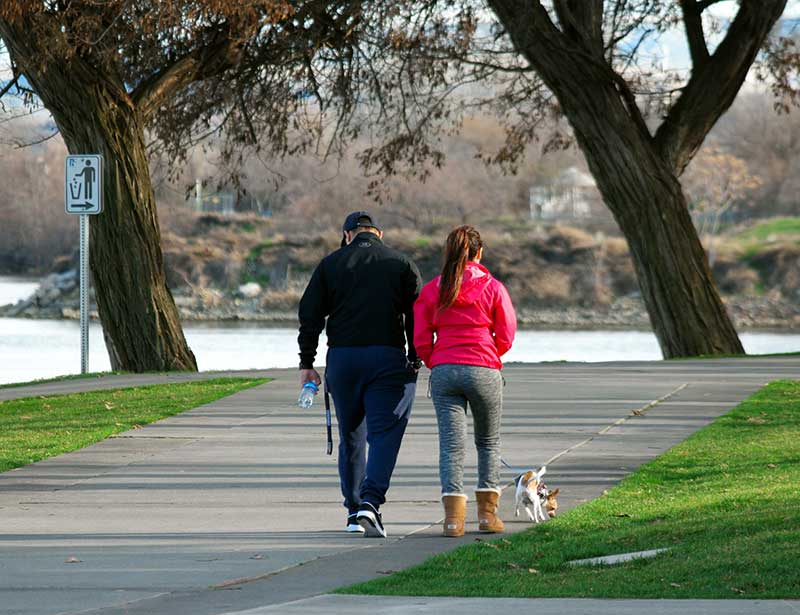 Couple walking the dog at a park
