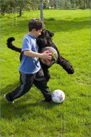 children-play-dog-303058.jpg