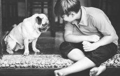 Boy and pug sitting on floor together