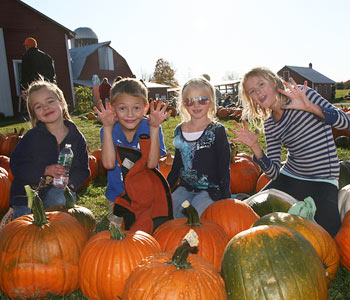 Pumpkin Picking Find Albany Area Pumpkin Patches