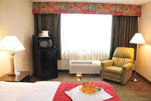 inside a room with plate of food and wine on bed