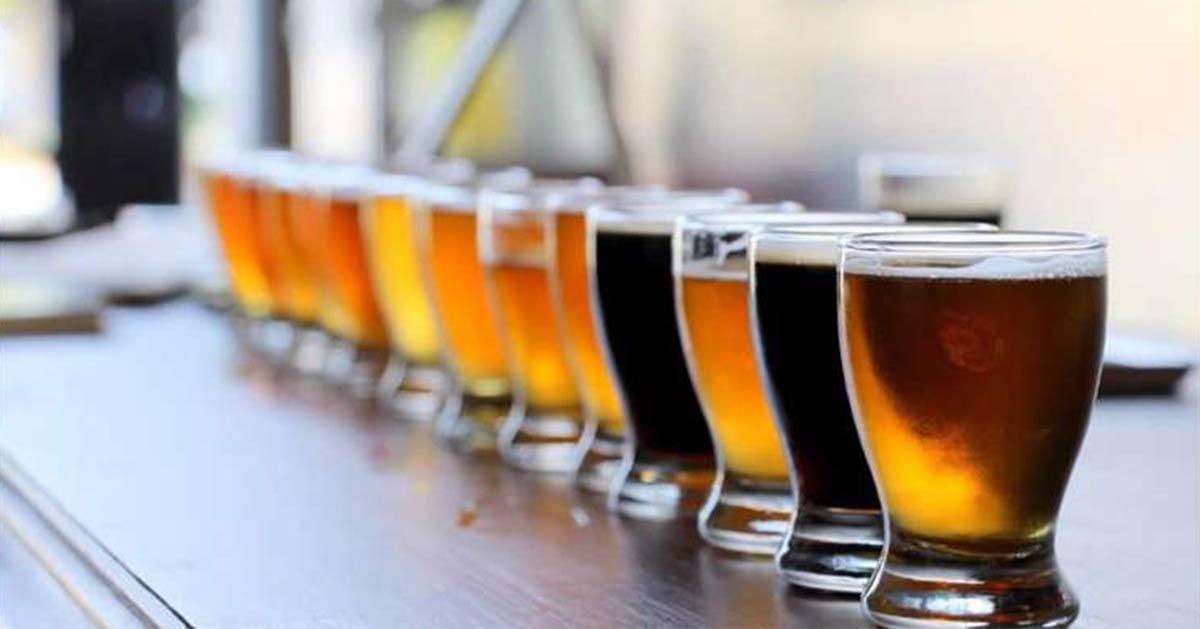 row of beer samples