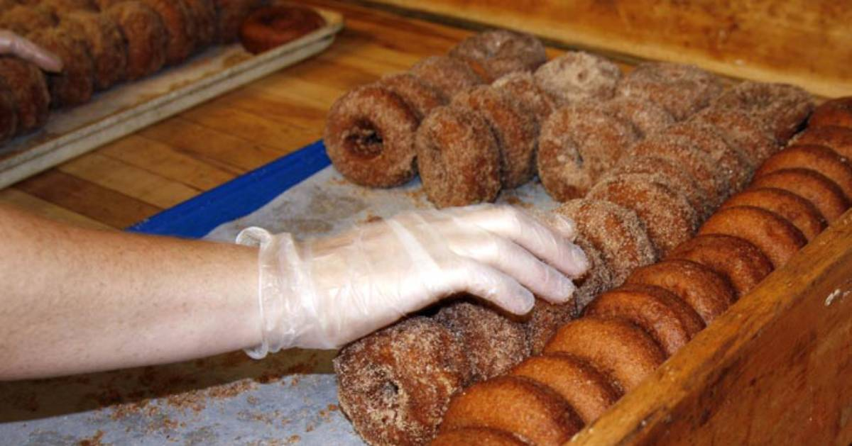 a gloved hand reaching for cider doughnuts lined up on a sort of wooden tray