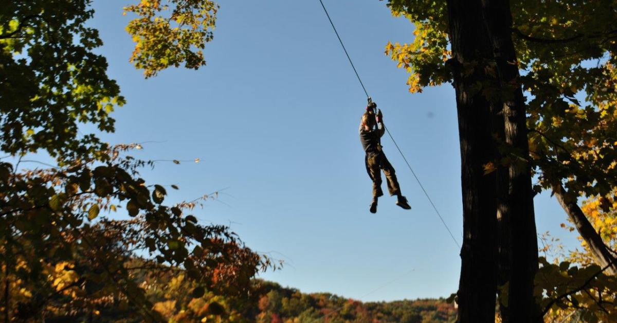 person ziplining past tree tops