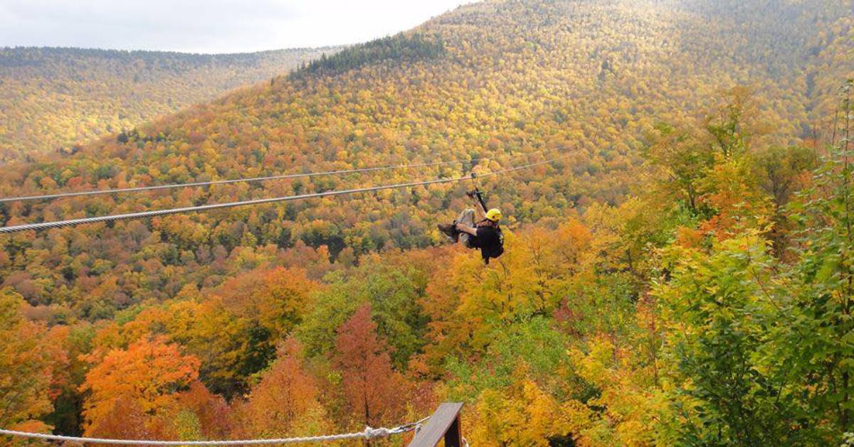 ziplining in fall