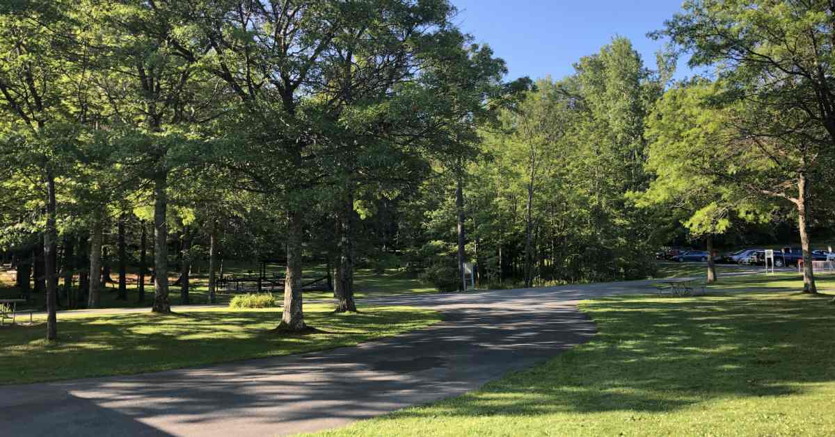 paved trail in a park