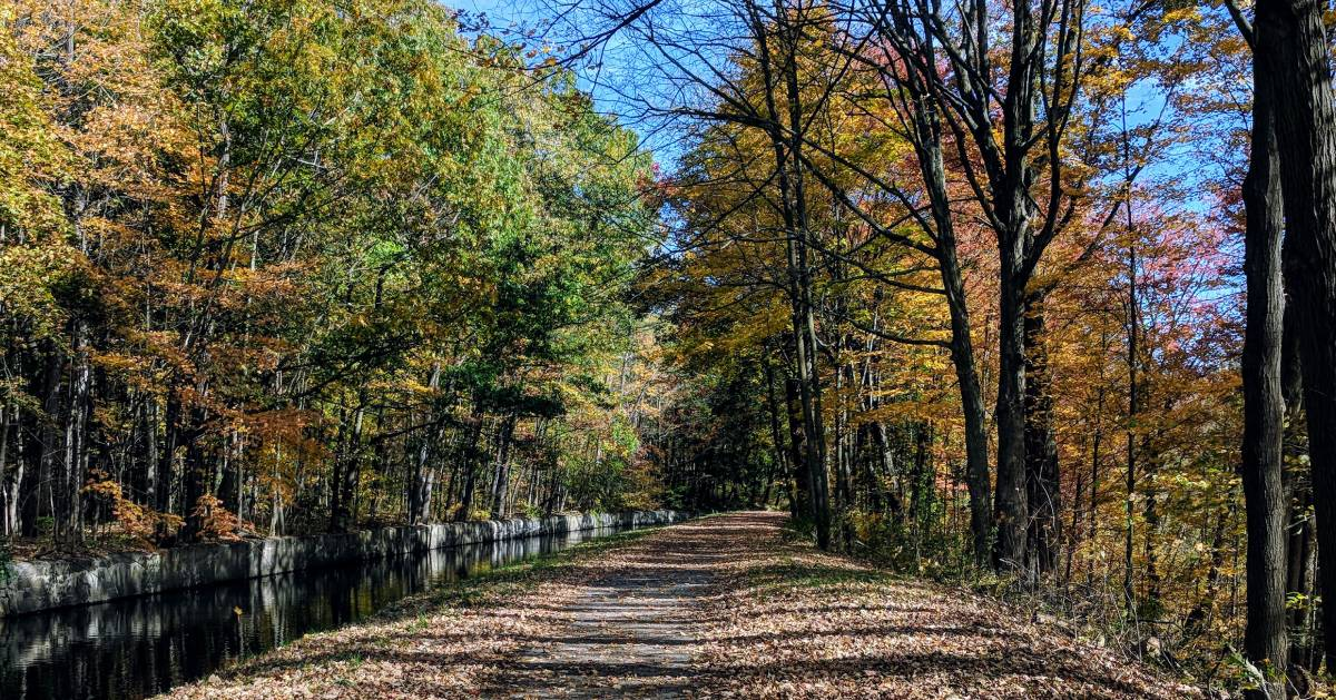 canal and path in the fall