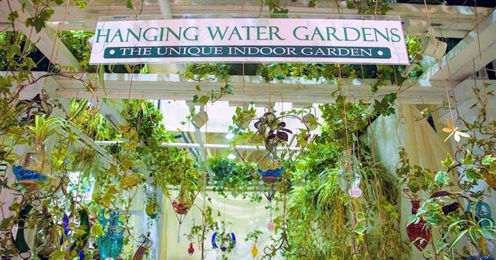 a sign saying Hanging Water Gardens The Unique Indoor Garden surrounded by a lot of hanging plants