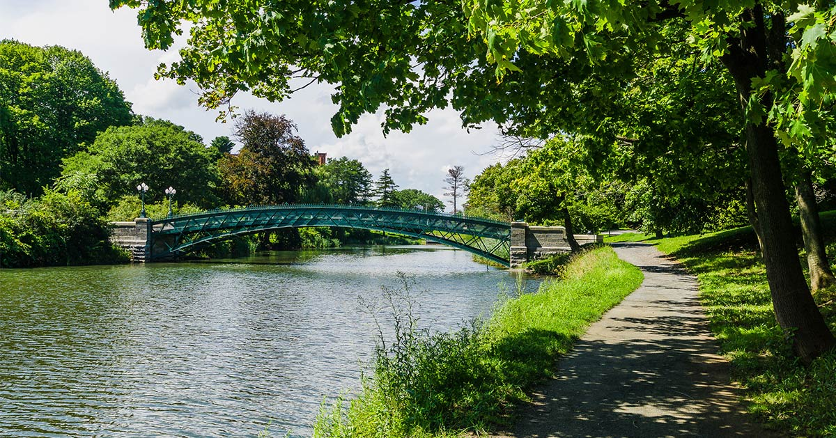 bridge over water in washington park