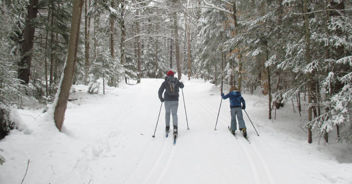adult and child cross country skiing together on trail