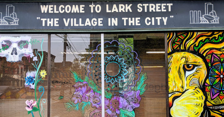 a window design on Lark Street with a sign that says Welcome to Lark Street The Village in the City