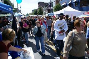 Lark Street Festival Goers