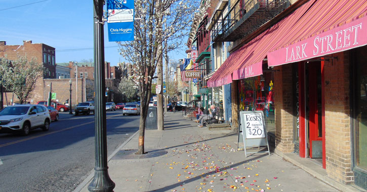 view of Lark Street with rose petals scattered on the sidewalk