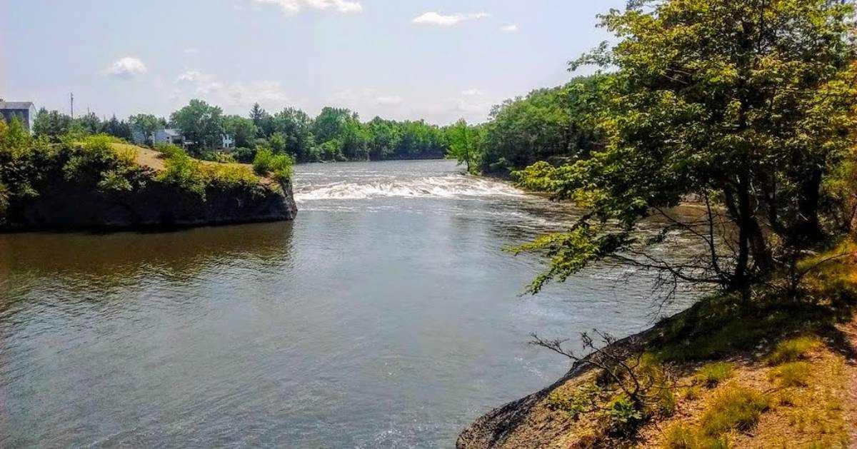 shoreline of waterway