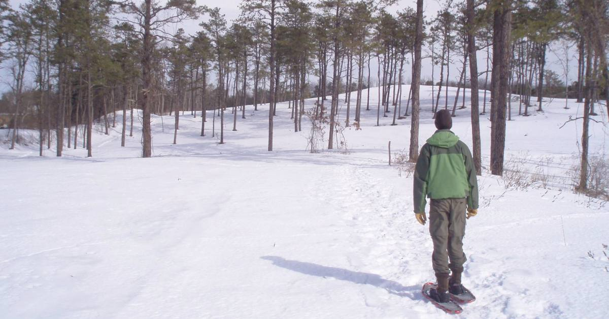a man wearing snowshoes looking at forest