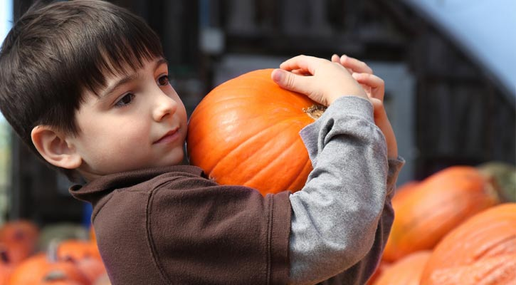 little boy holding up a pumpkin