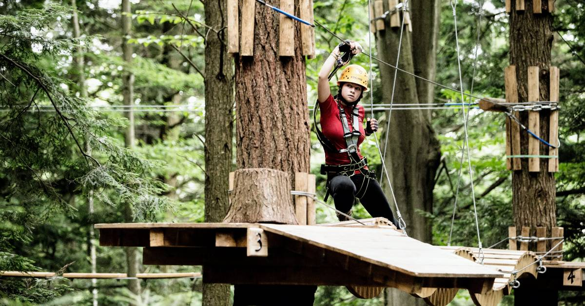 person in aerial treetop course