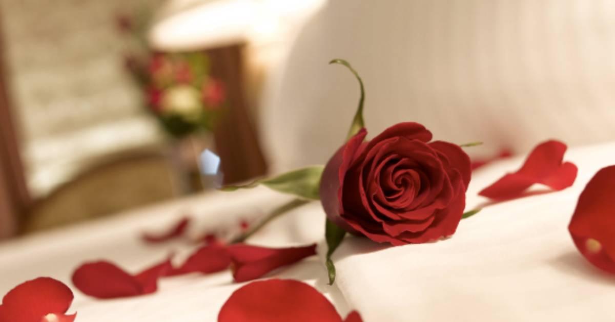 rose petals on a bed