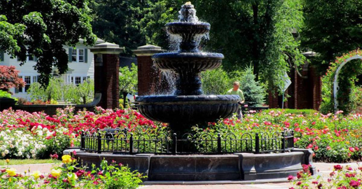 large fountain and rose garden