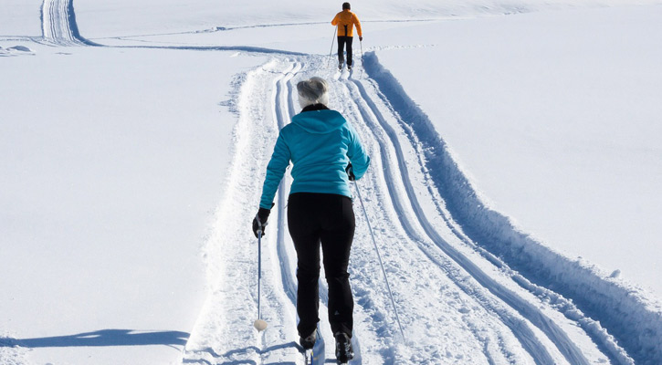 the backs of two people cross-country skiing