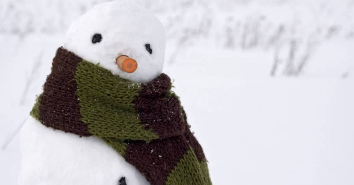 snowman with a carrot nose and scarf