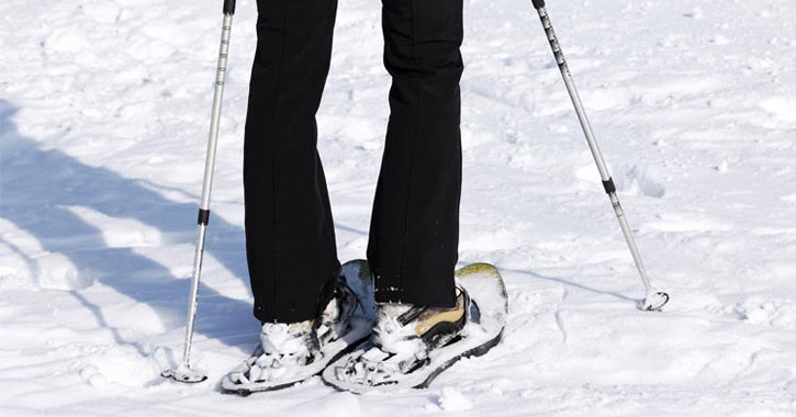 Close up of snowshoes and poles on snow