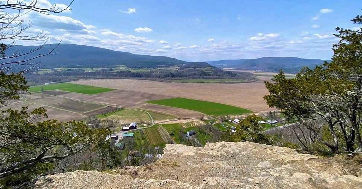 view overlooking field