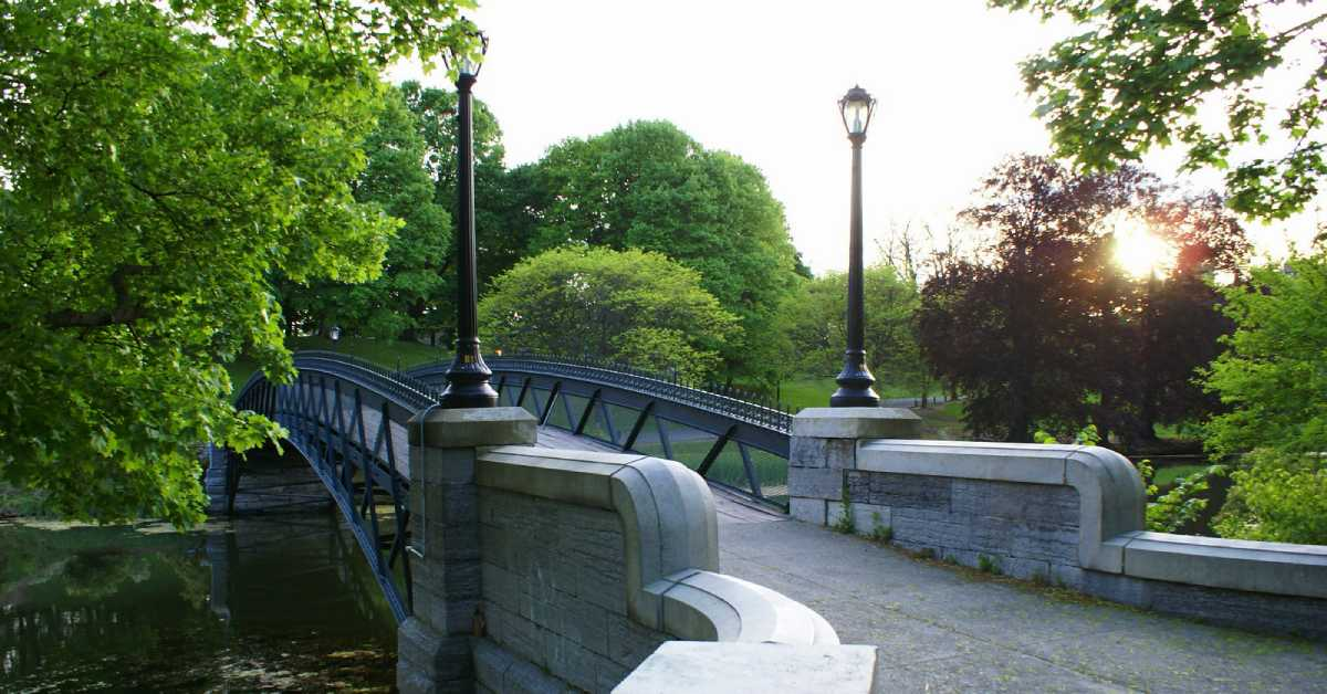 bridge in washington park