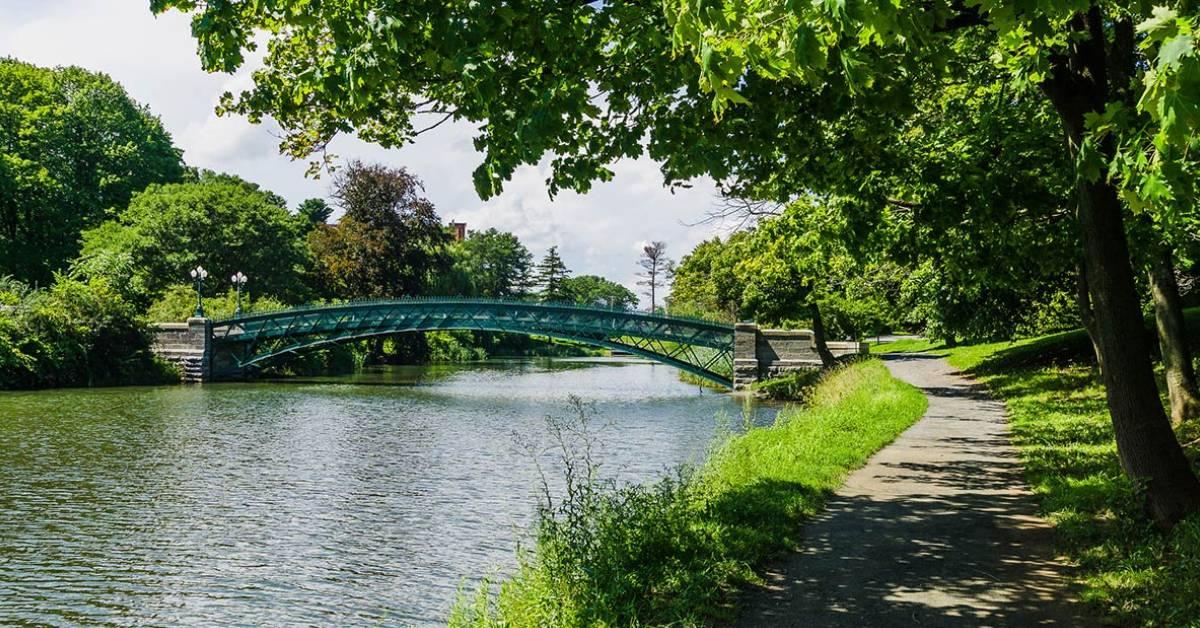 bridge in a scenic park