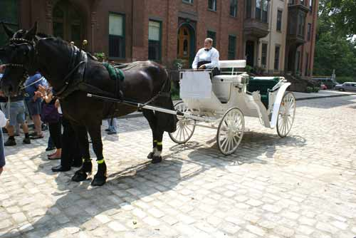 Horse & Carriage on Troy's Old Fashioned Cobblestone Road