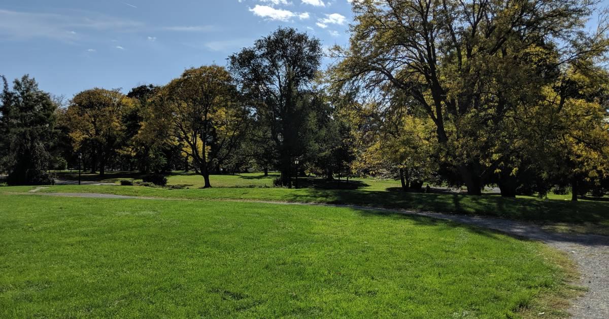 trail through park