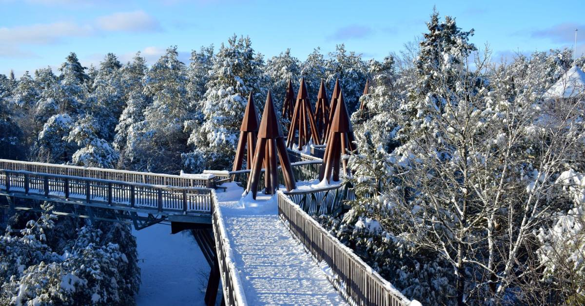 elevated trail and snowy trails