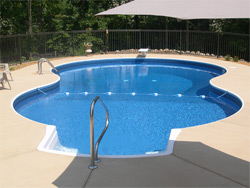 Pool Shape albany pool planning guide - swimming pool shapes