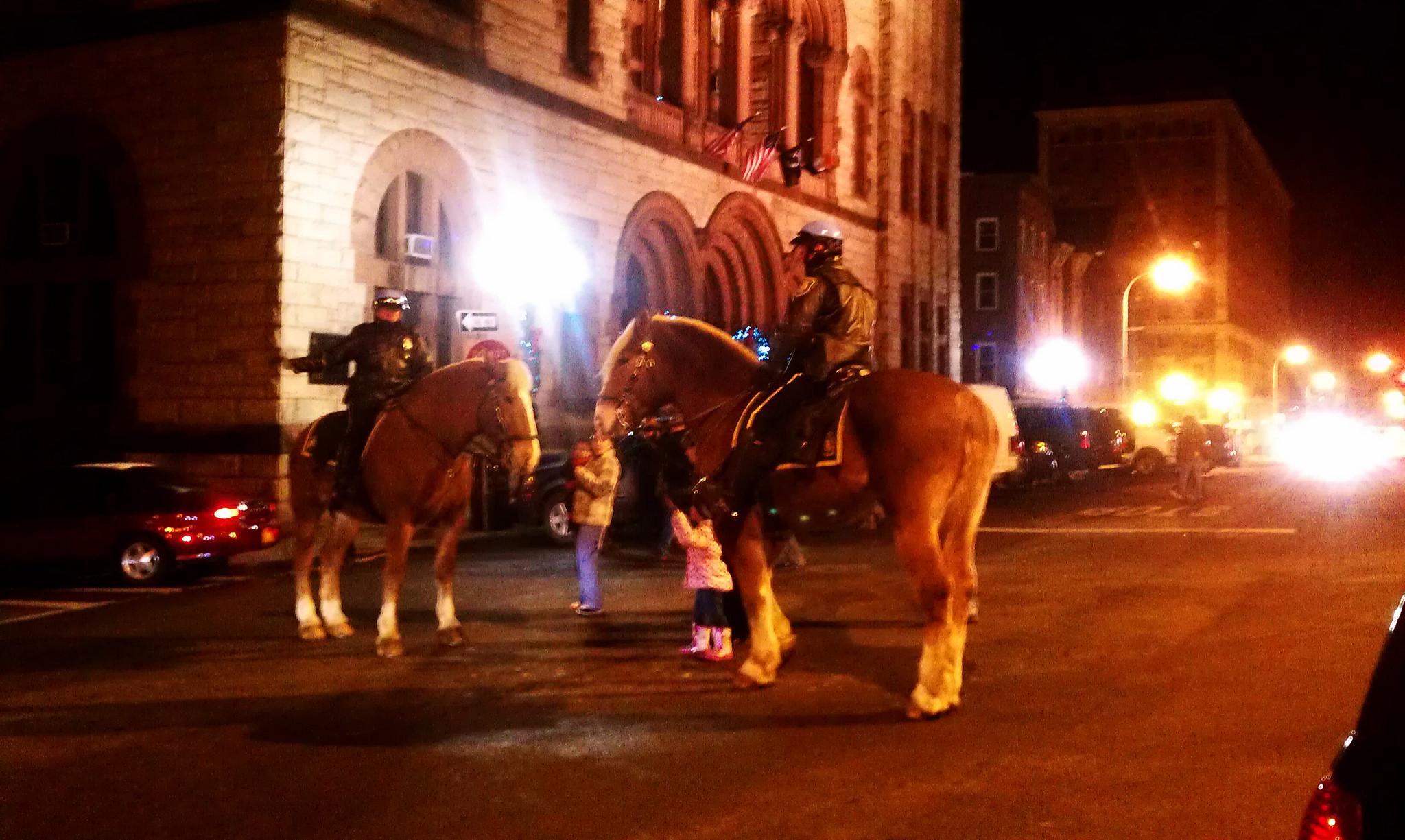 albany police horses