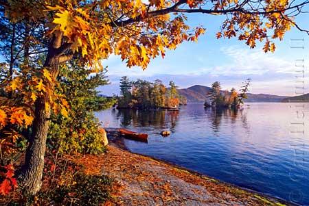 heilman-fall1.jpg