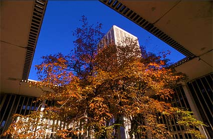 fall-albany.jpg