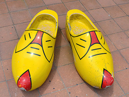 painted clogs.jpg