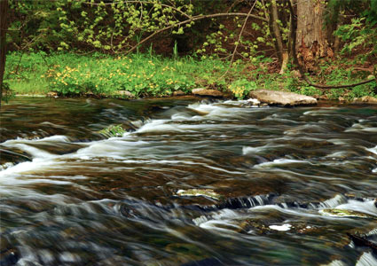 river-flowing.jpg