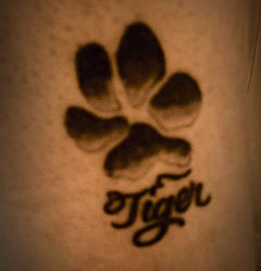 tiger-paw-tattoo.jpg