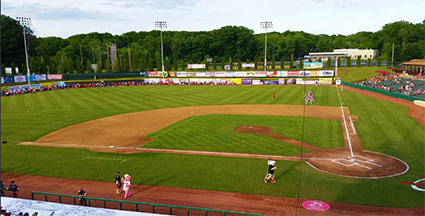 valleycats-field.jpg