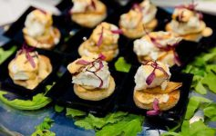 appetizers artfully plated