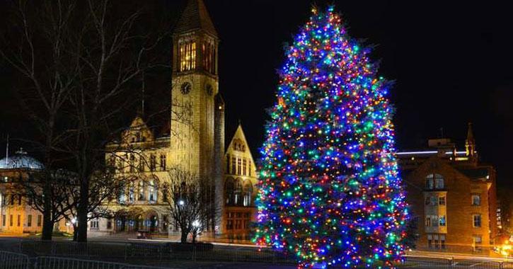 a festive holiday tree