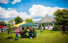 outdoor festival, tents, and gazebo
