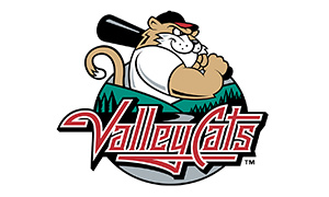 tri-city valleycats logo