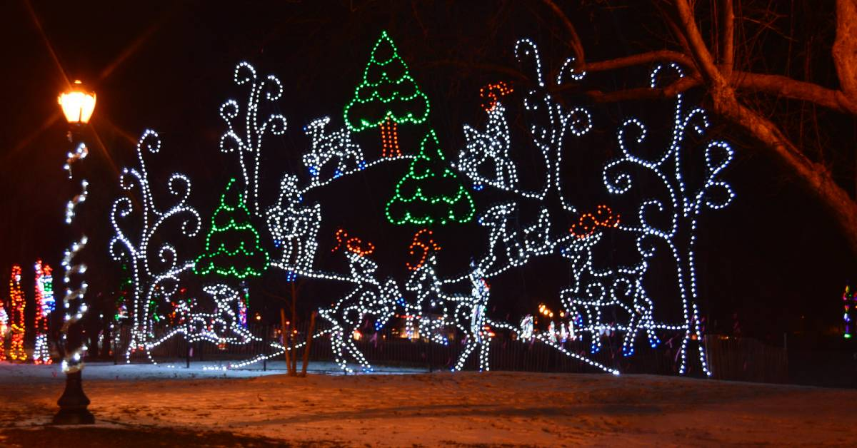 reindeer scene made of holiday lights