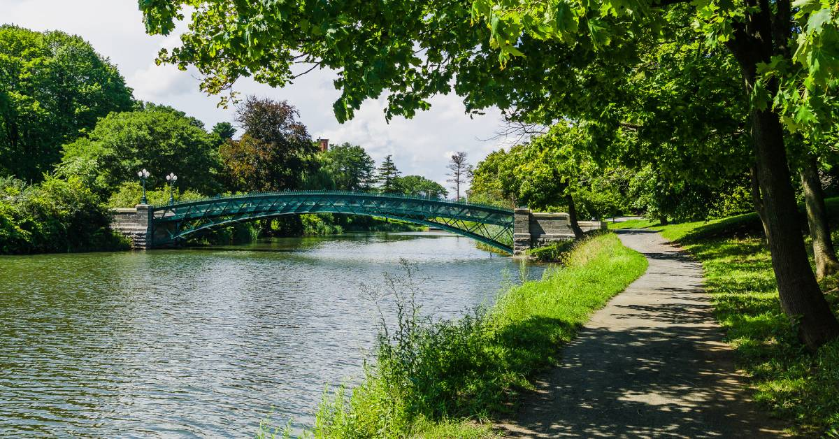 a bridge of a waterway