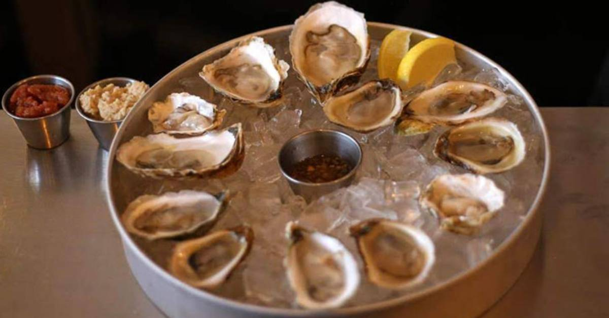 oysters in a dish
